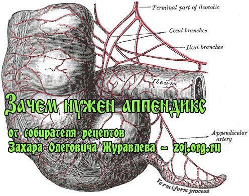 Як лікувати ревматоїдний артрит суглобів