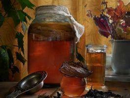 Лікування чайним грибом