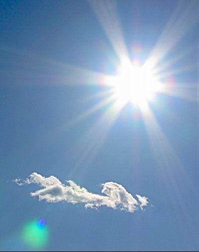 Вплив сонячного світла